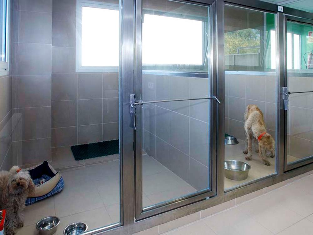 Cl nicas veterinarias aplicacions inoxidables - Decoracion para foto ...